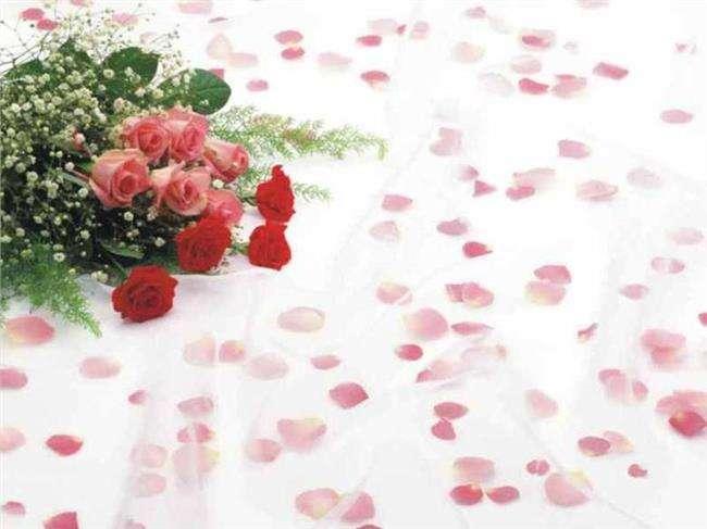 红色假期黑色婚礼高清,红色婚礼黑色假期2女主